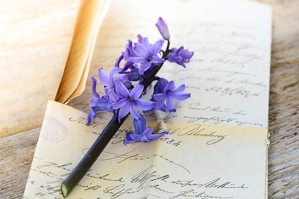 ヒヤシンスと手紙