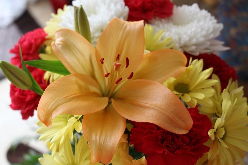 旬の花を選べば安い