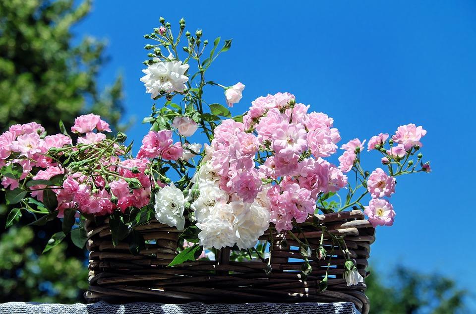 青空と花束