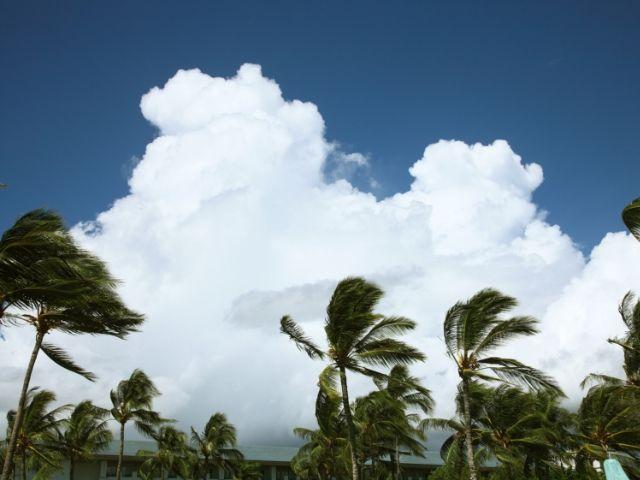 台風の数が増えて秋も不人気